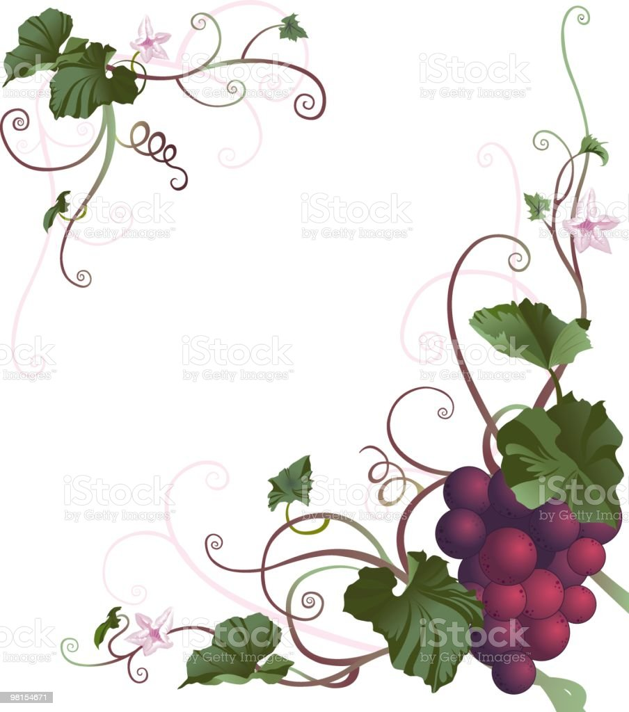 Grape Vine Border stock vector art 98154671 | iStock