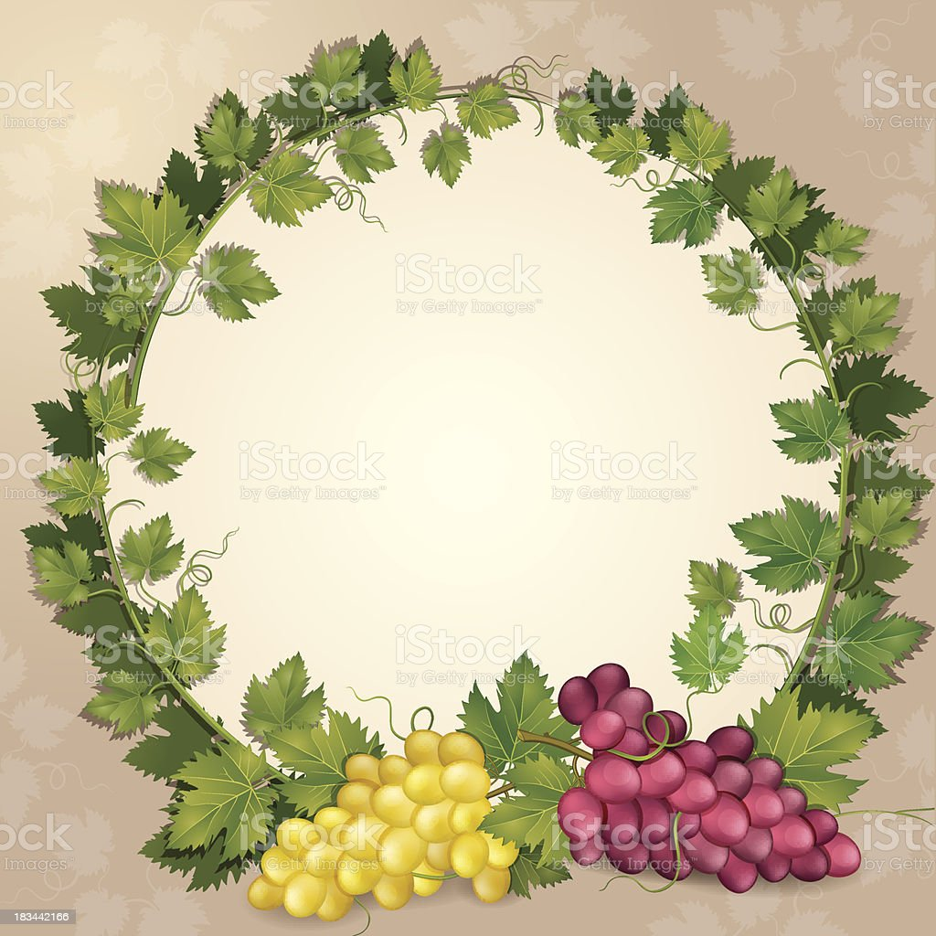 Grapes and vine royalty-free stock vector art