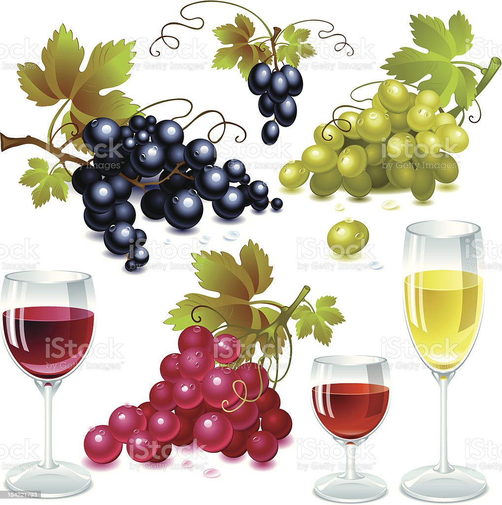 Grapes and wine vector art illustration