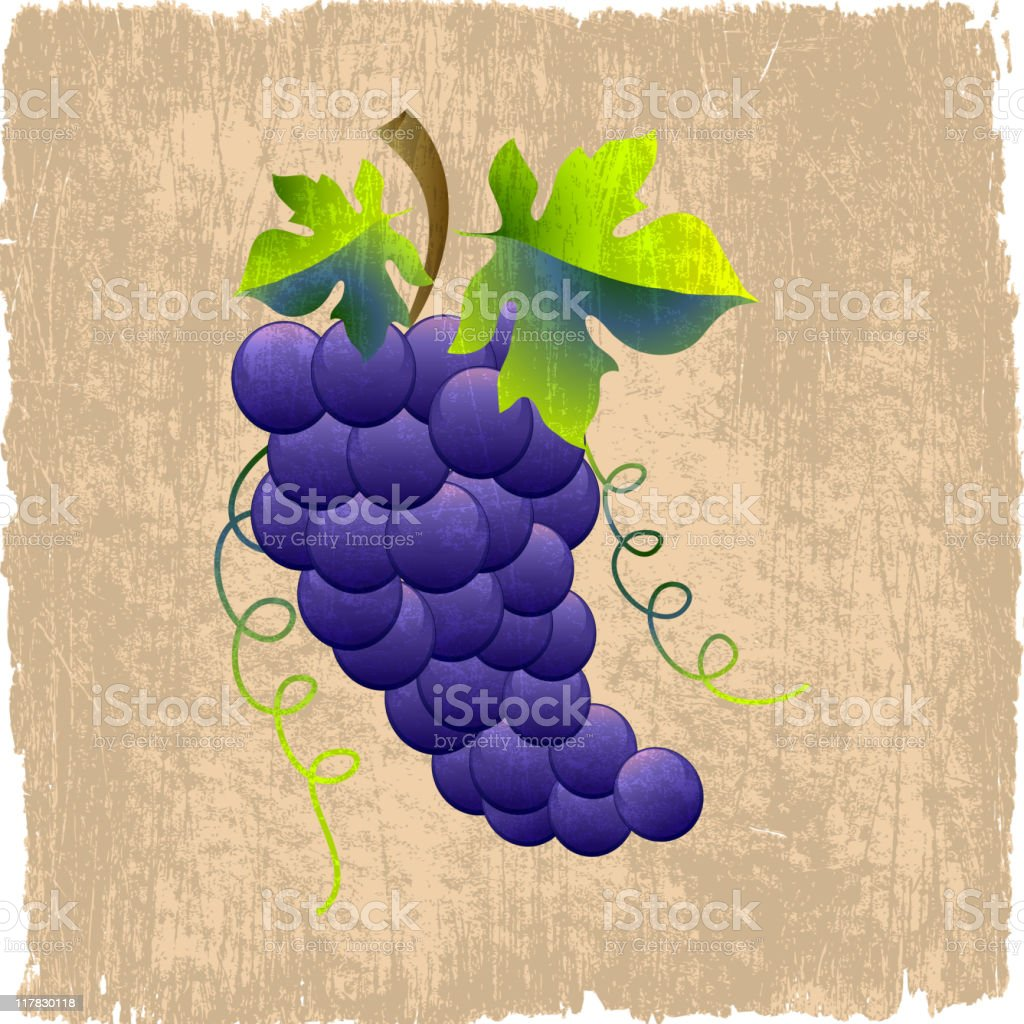 grapes on royalty free vector Background royalty-free stock vector art