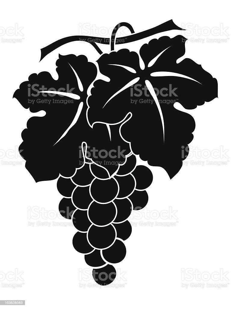 Grapes. royalty-free stock vector art