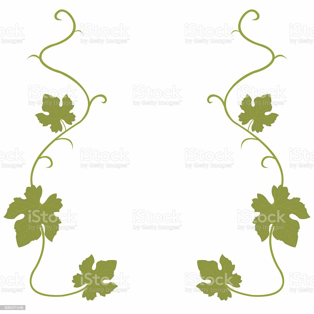 Grapes vine background royalty-free stock vector art