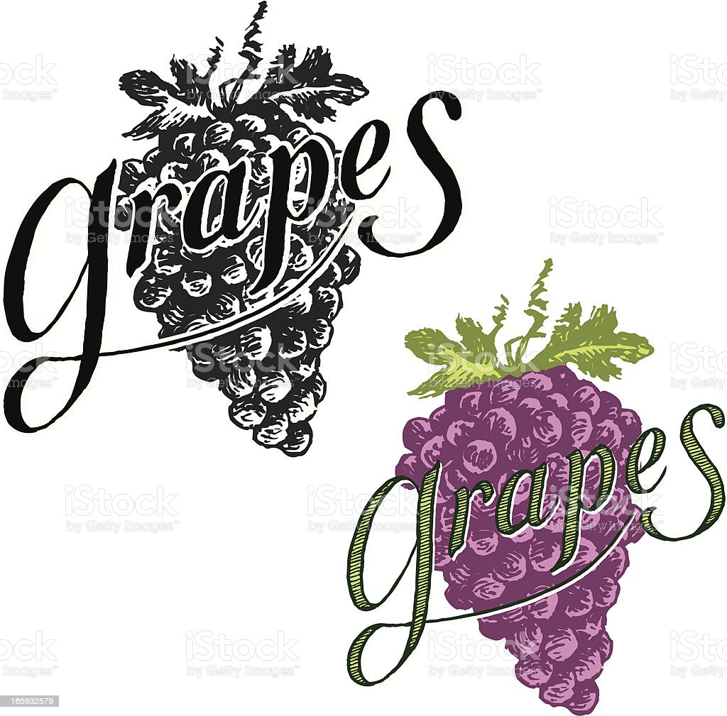 Grapes with Text royalty-free stock vector art
