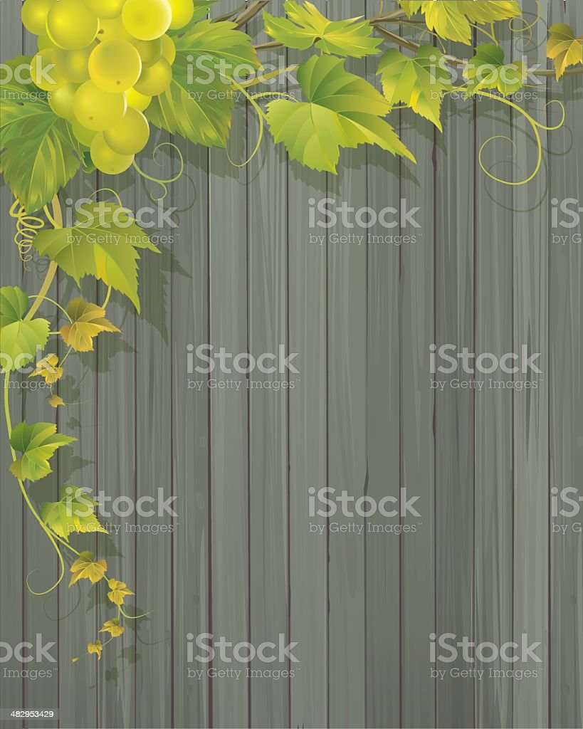 Grapevine and Wooden Wall Background royalty-free stock vector art