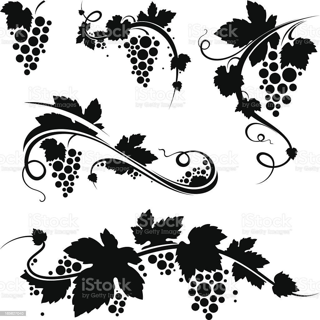 Grapevine/wine symbols vector art illustration