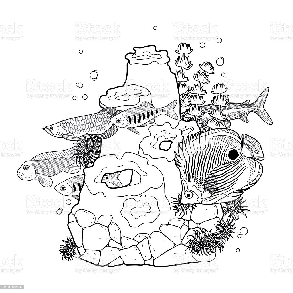 graphic aquarium fish with coral reef stock vector art 613768604