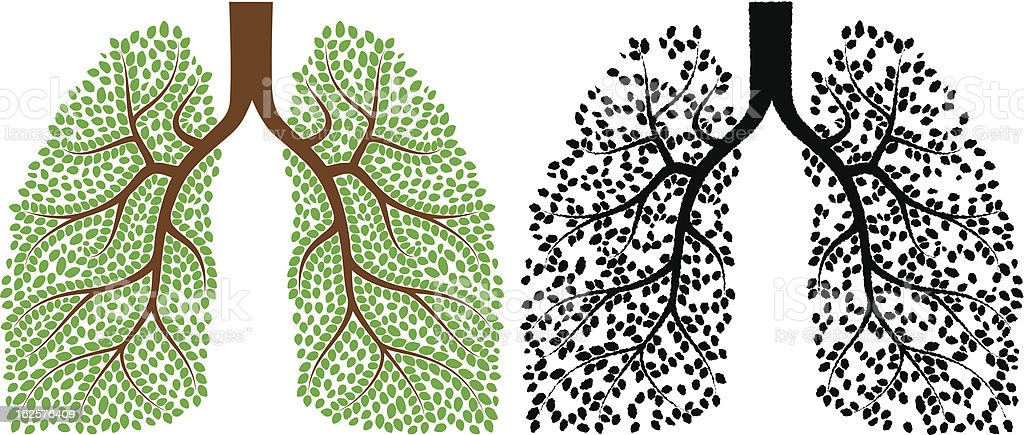Graphic art of lungs composed plants, leaves and branches royalty-free stock vector art