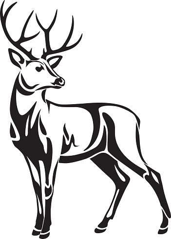 Head Of Deer With Horns 10736925 further El Rincon Del Teacher Tatuajes Tribales B O Tattoodonkey furthermore Picture Horse Head likewise 271033366138 moreover Search Vectors. on deer head silhouette