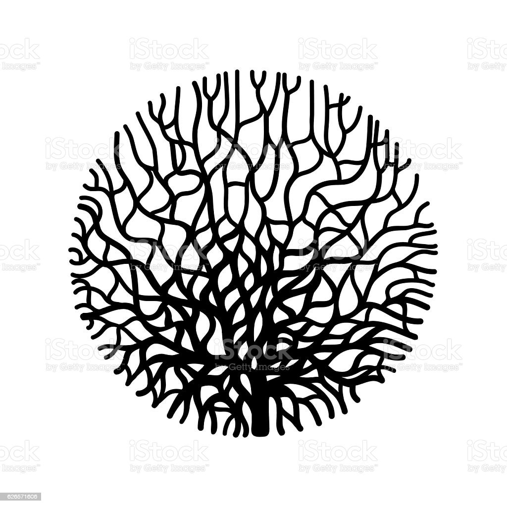 Graphic coral circle vector art illustration