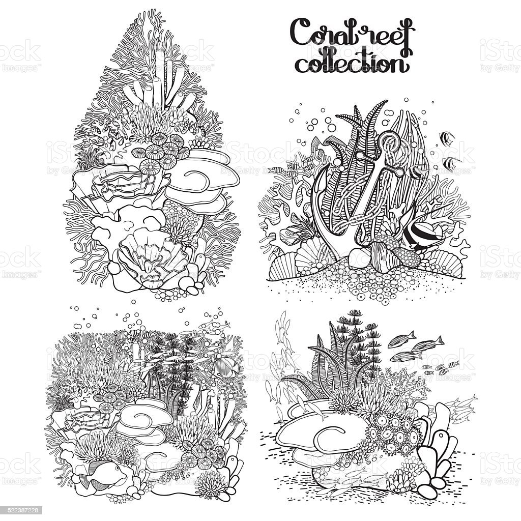 Graphic coral reef collection vector art illustration