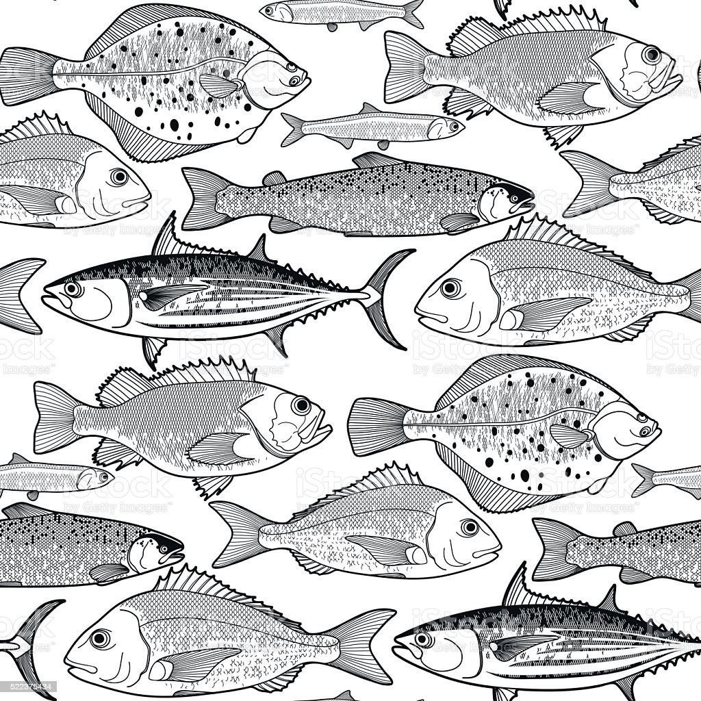 Graphic fish pattern vector art illustration