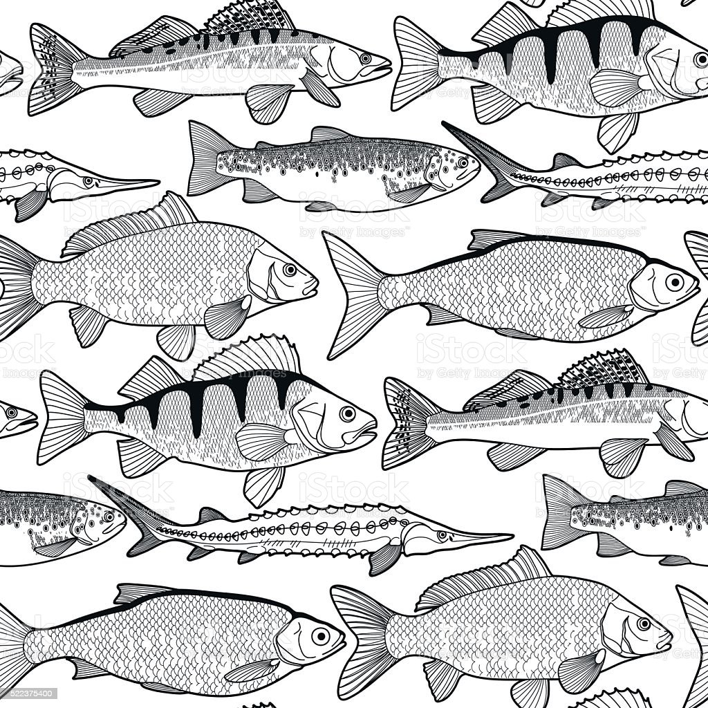 Graphic freshwater fish pattern vector art illustration