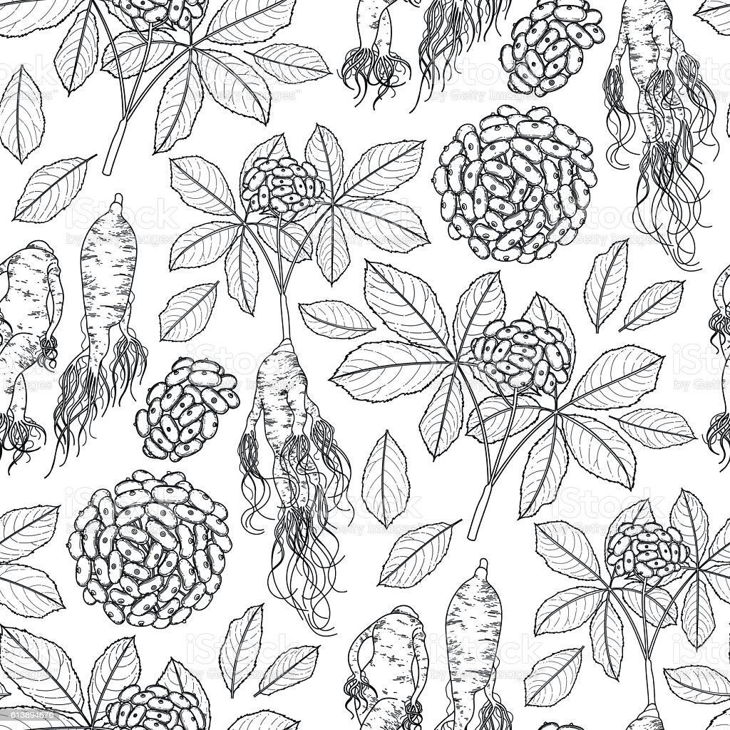 Graphic ginseng pattern vector art illustration