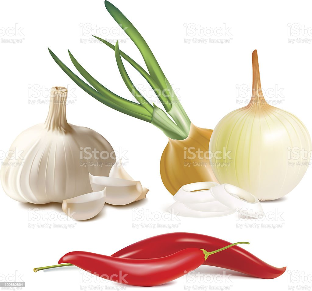 Graphic images of garlic onion and red pepper vector art illustration