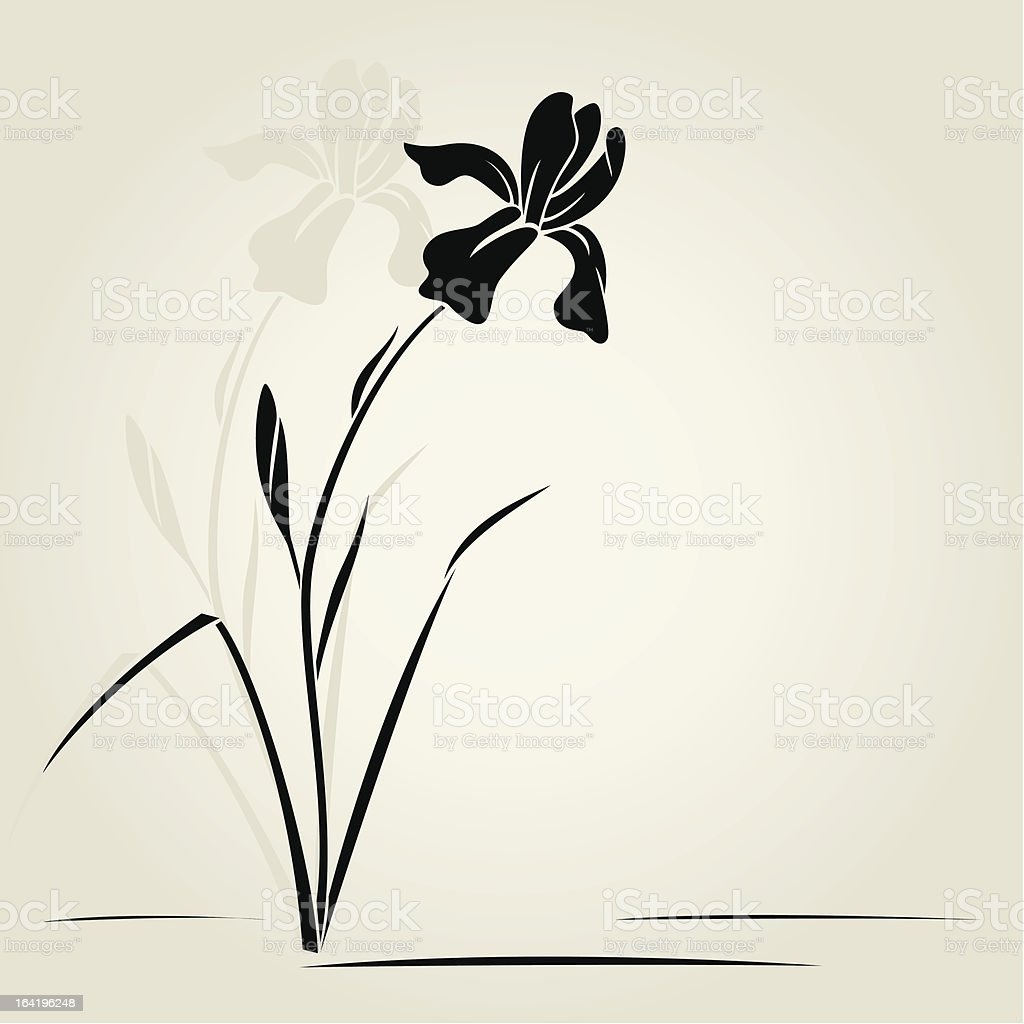 Graphic of black iris flower on off white background royalty-free stock vector art