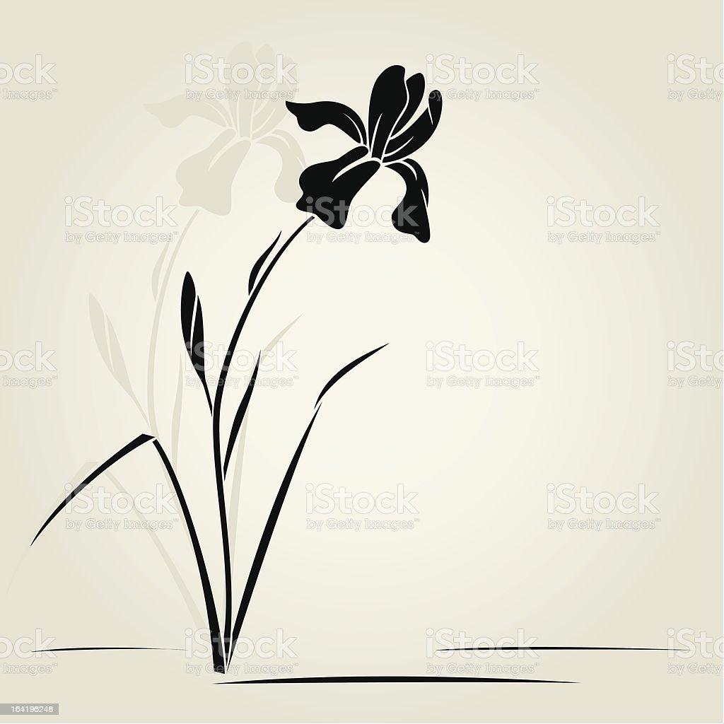 Graphic of black iris flower on off white background vector art illustration