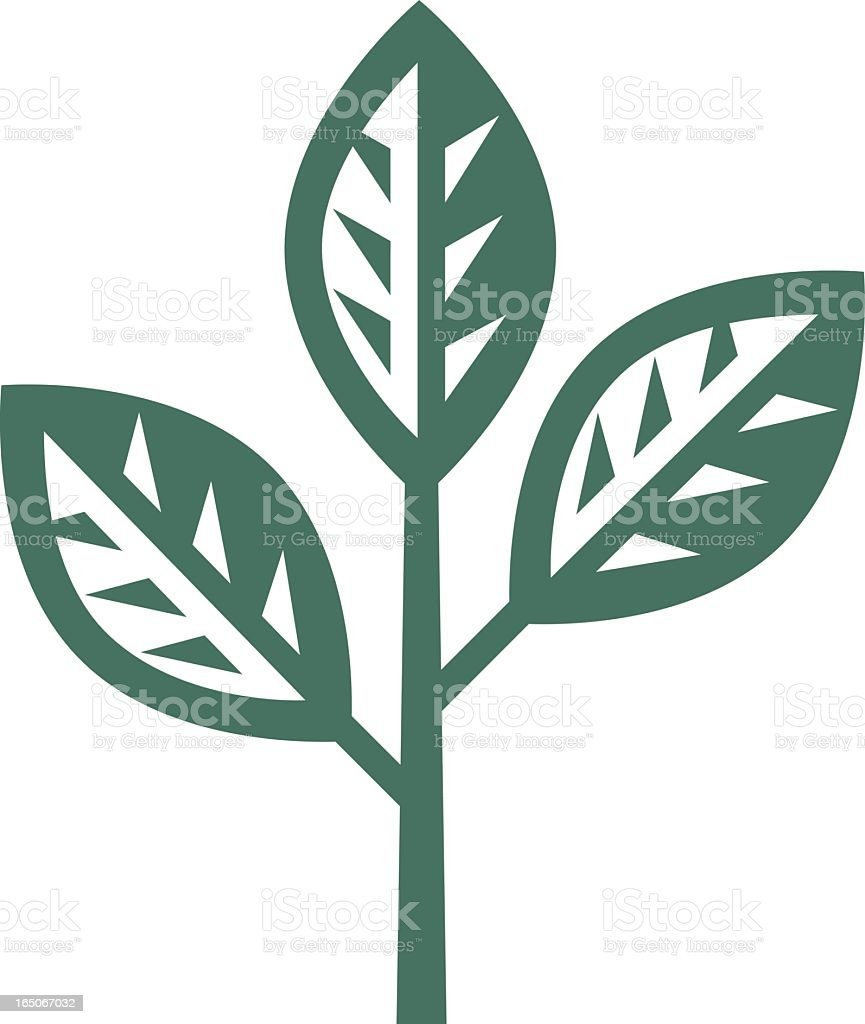 Graphic of branch with three leaves royalty-free stock vector art