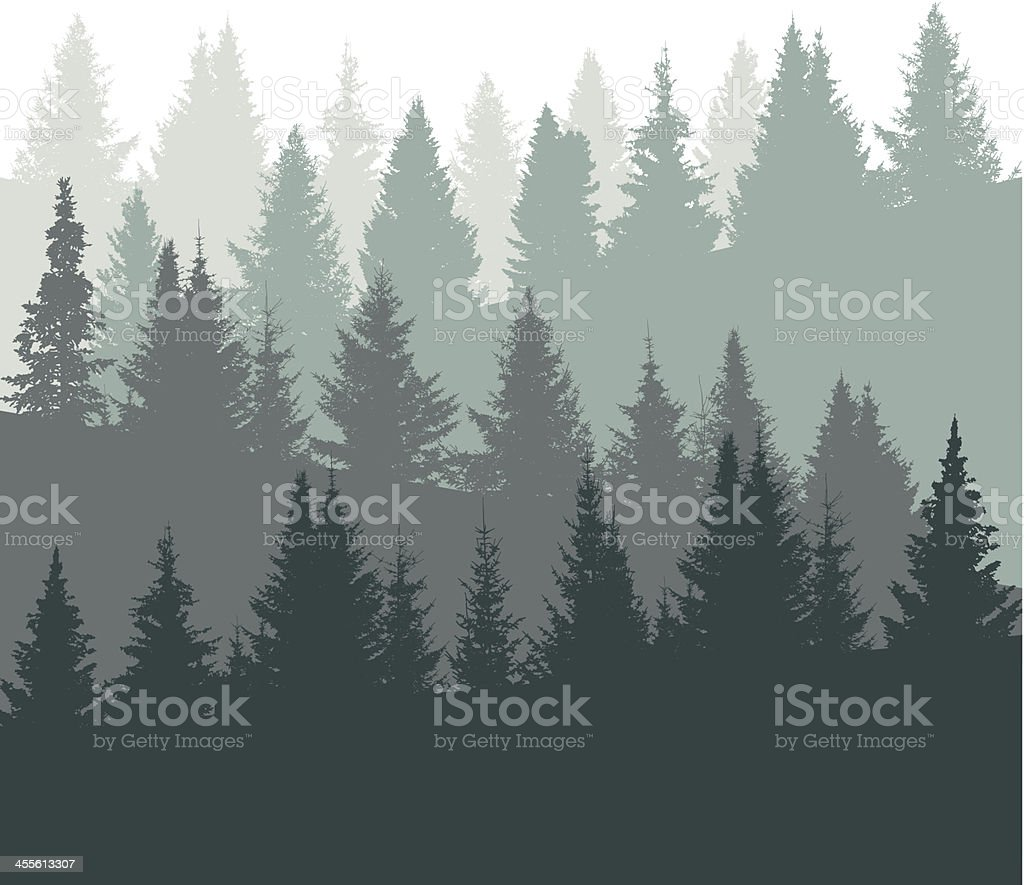 Graphic of pine tree silhouettes in green and gray tones vector art illustration