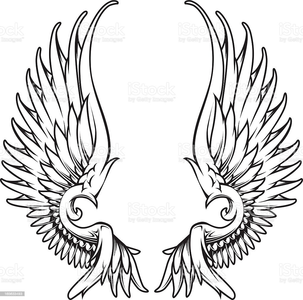 graphic wings royalty-free stock vector art