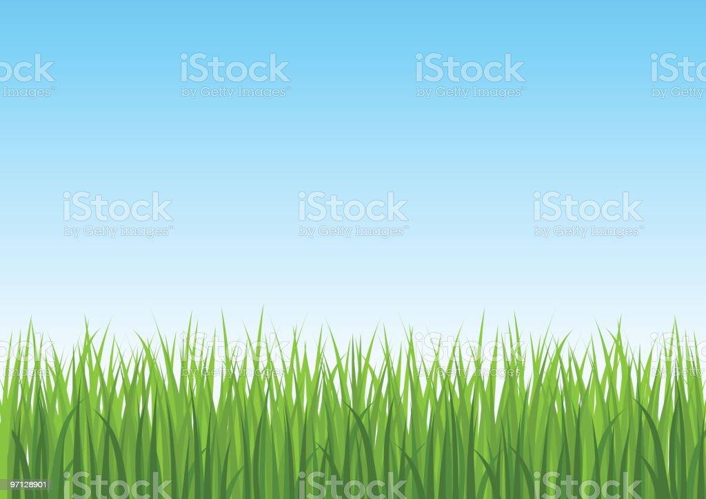 Grass and blue sky vector art illustration