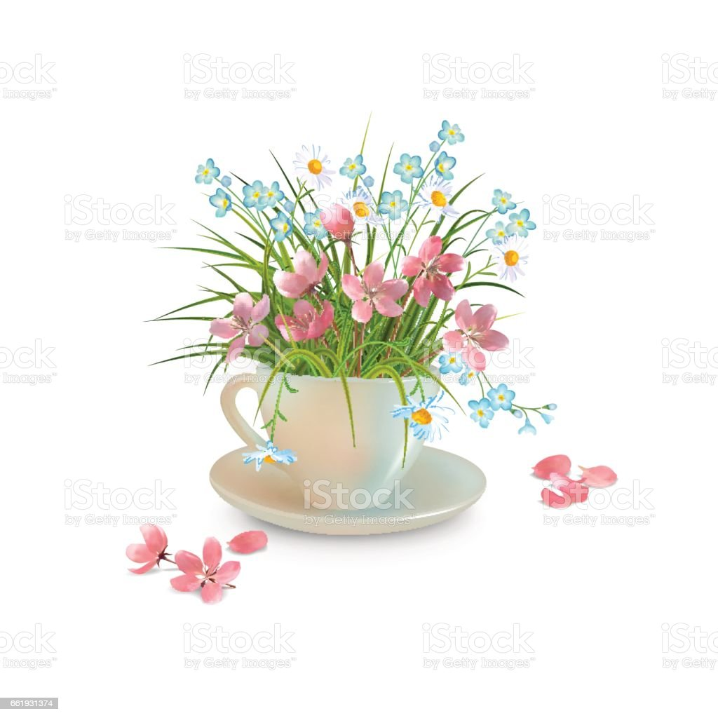Grass and Flowers in the Cup vector art illustration