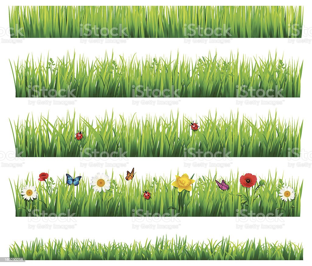 Grass and flowers set vector art illustration