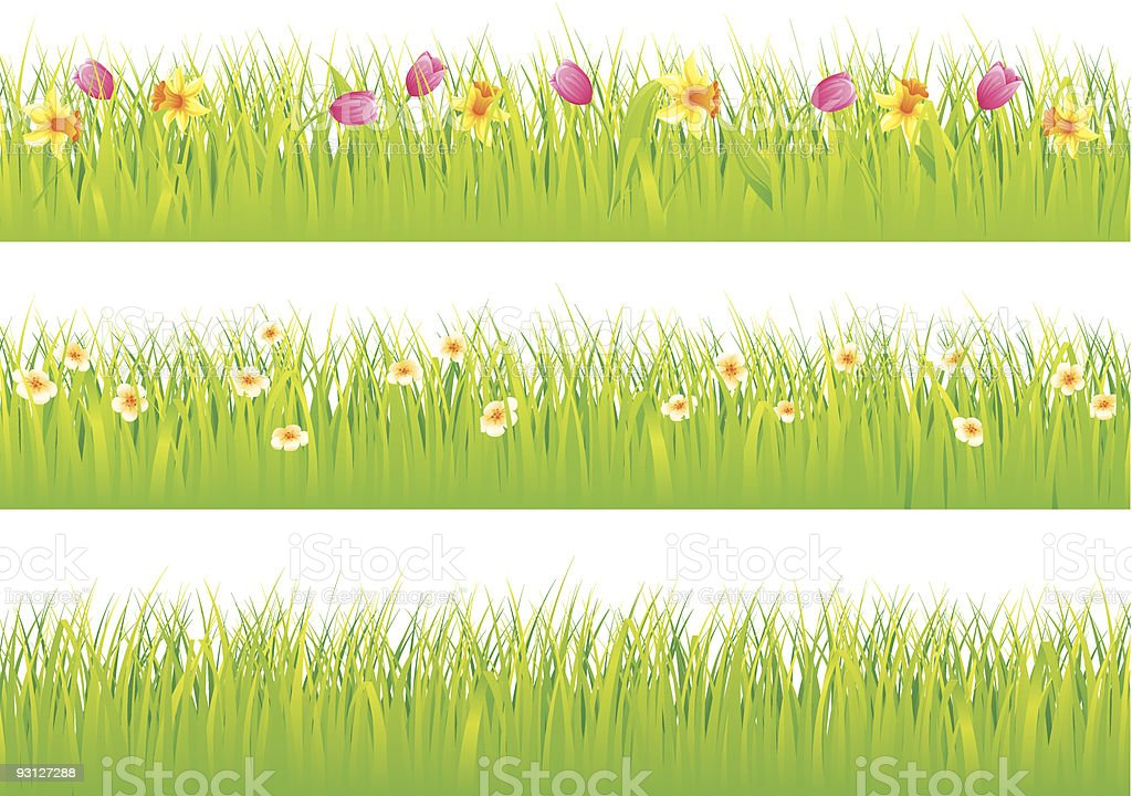 Grass and flowers royalty-free stock vector art