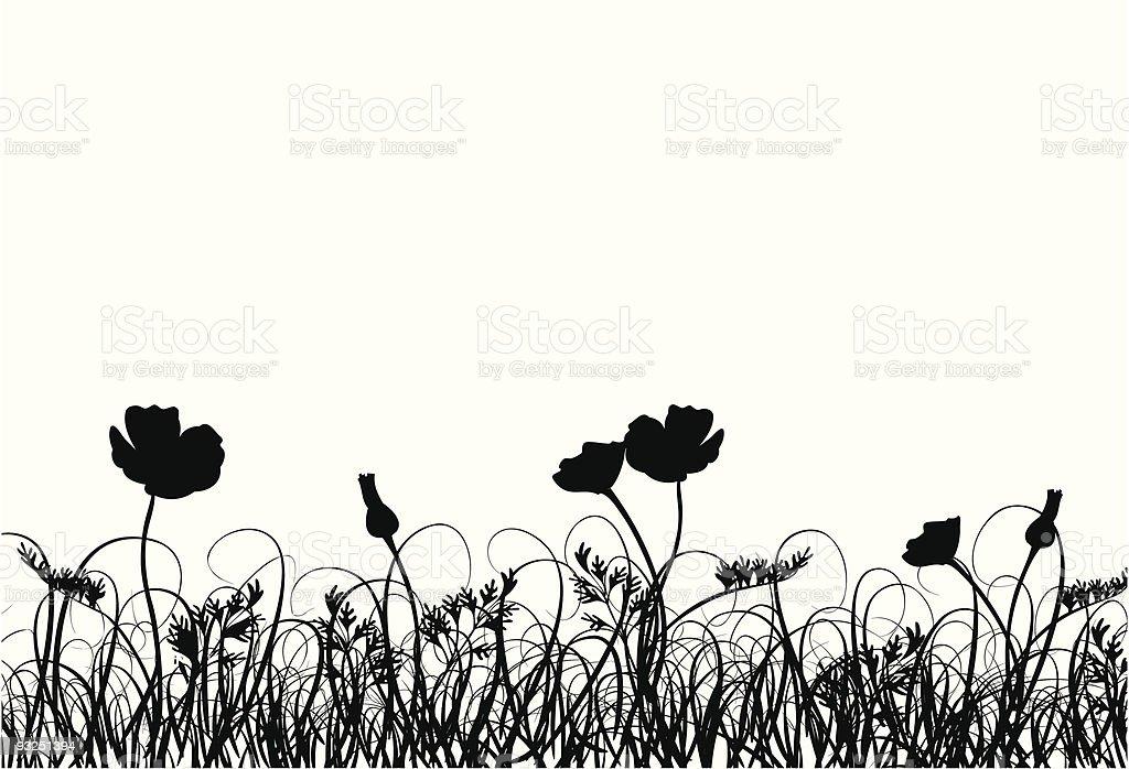 Grass and poppy vector art illustration