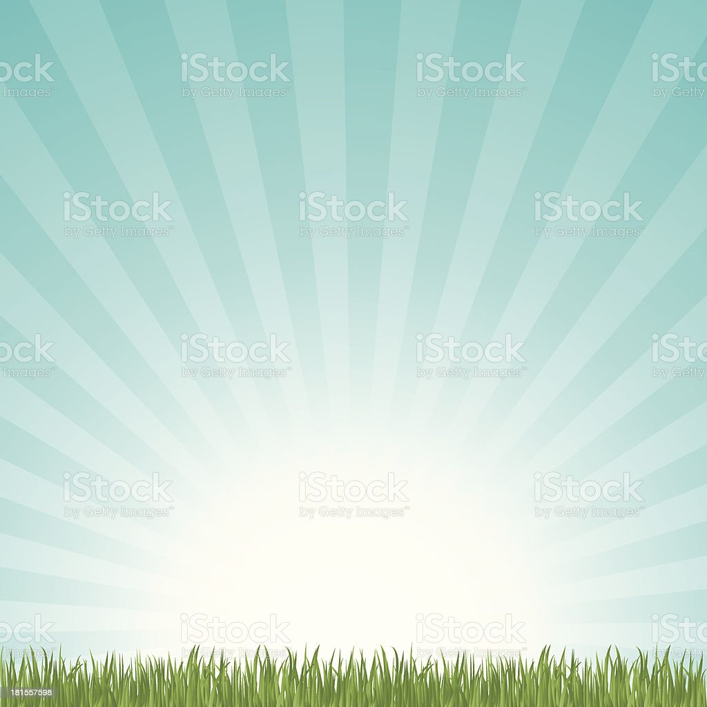 Grass and sky background vector art illustration