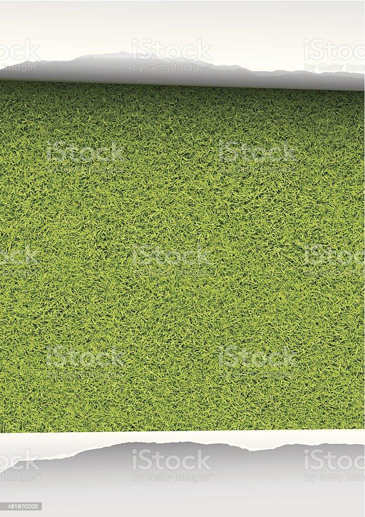 Grass background vector art illustration