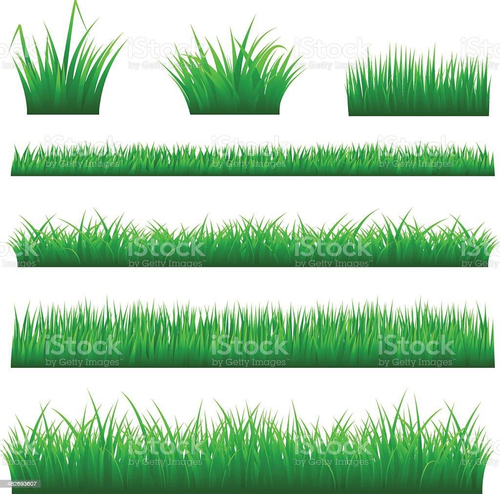 Grass Backgrounds vector art illustration