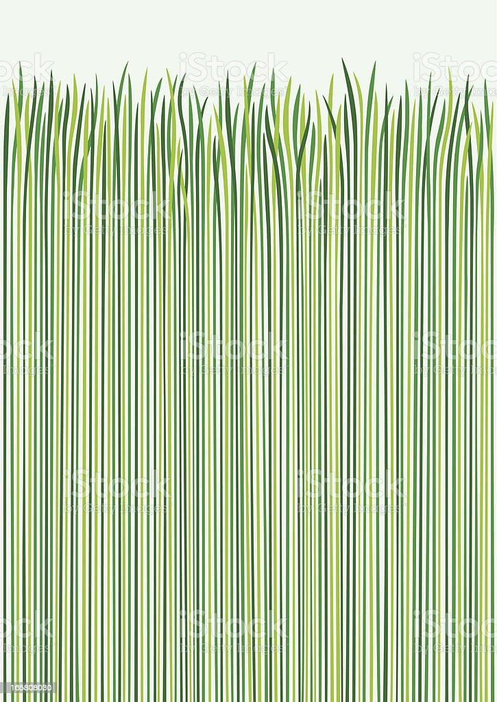 Grass Design royalty-free stock vector art