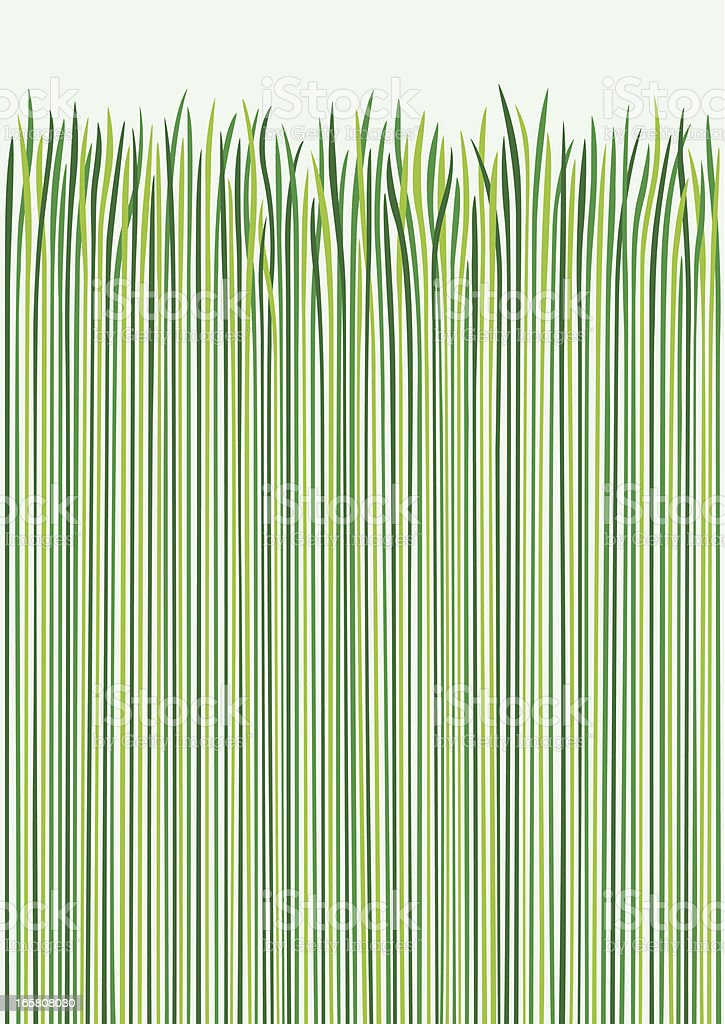 Grass Design vector art illustration