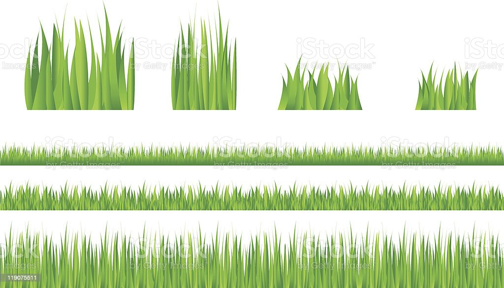 Grass detail collection royalty-free stock vector art