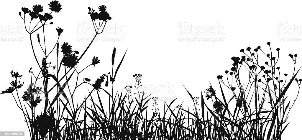 Grass Field Silhouette vector art illustration