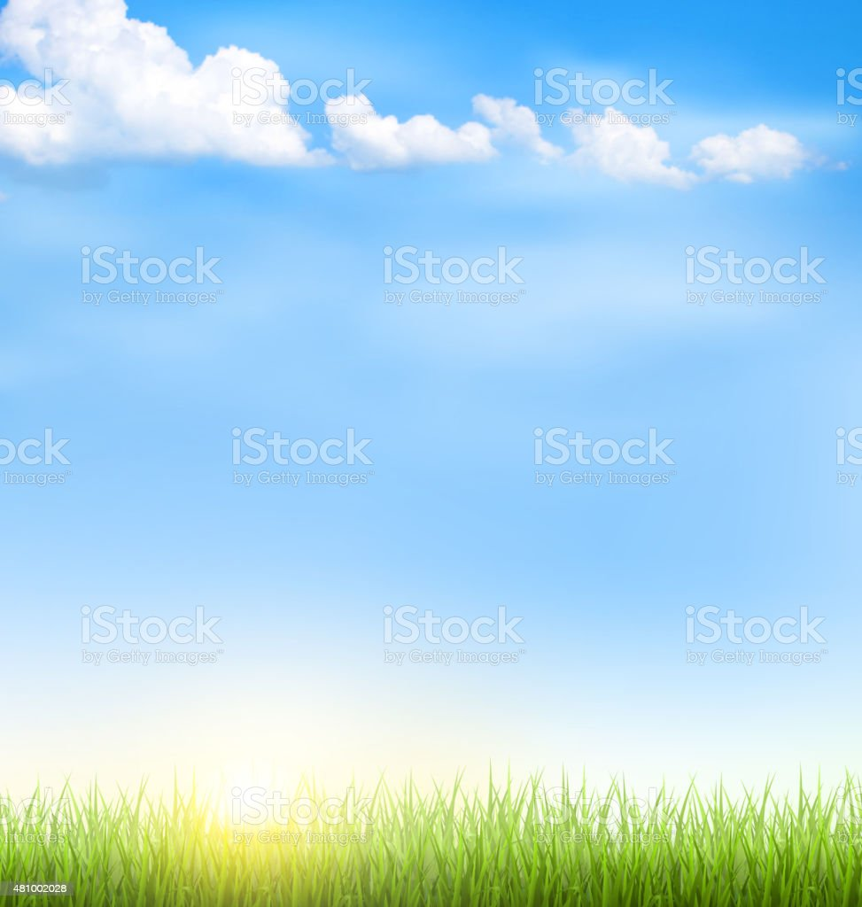 Grass lawn with clouds and sun on blue sky vector art illustration