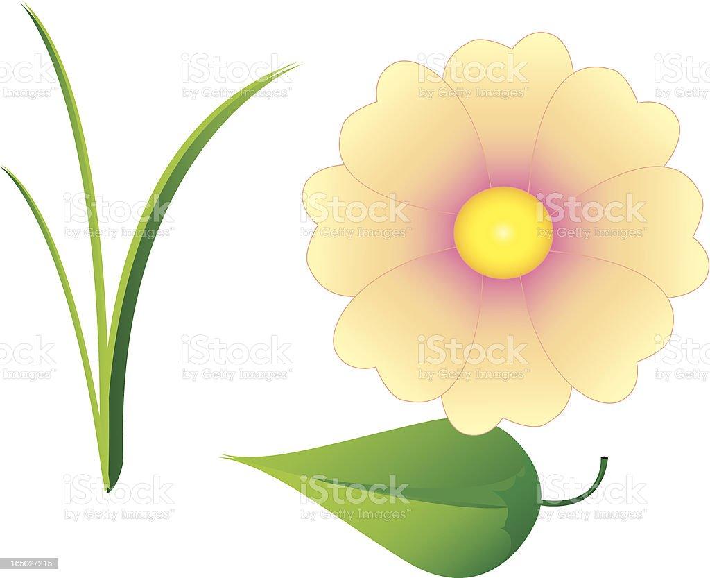 Grass, leaf, flower vector art illustration