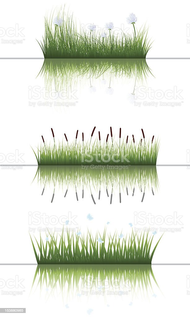 grass on water set royalty-free stock vector art