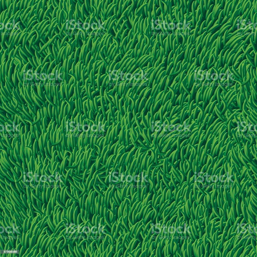 Grass - seamless (high detail) vector art illustration