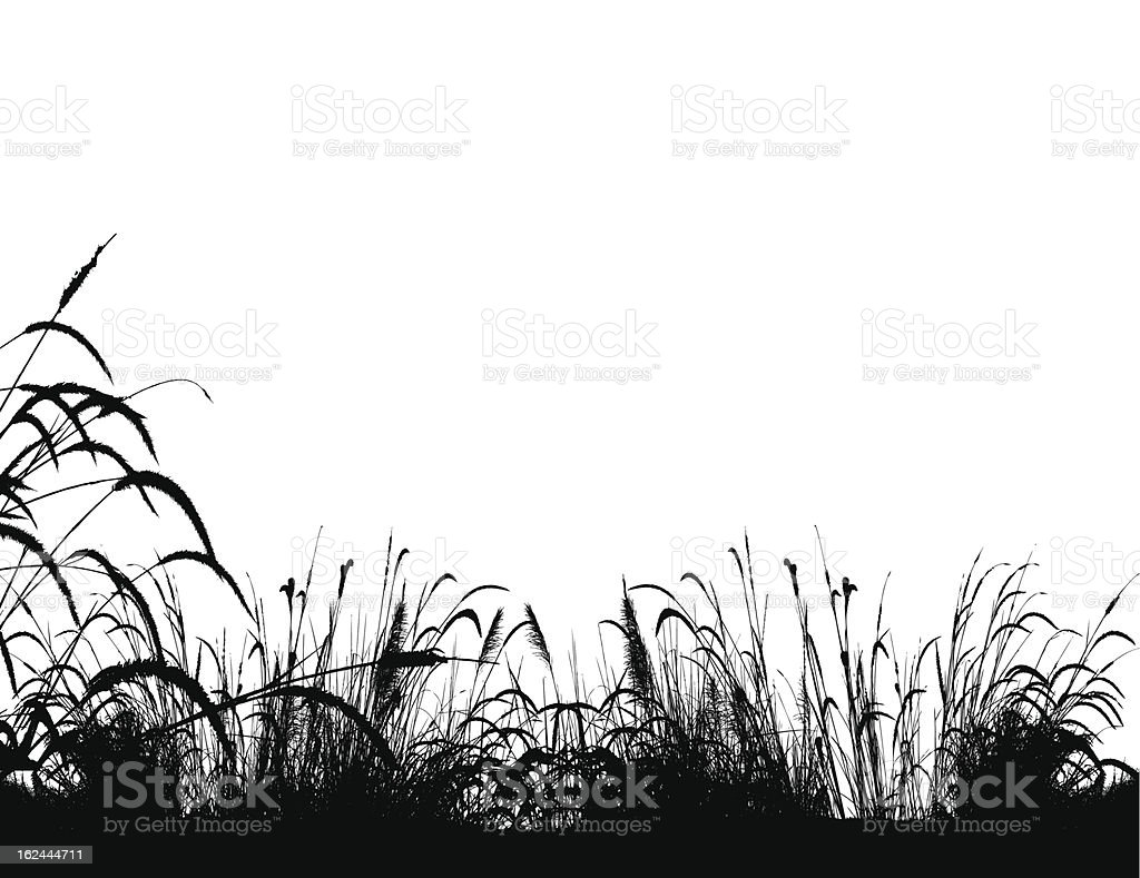 grass silhouette background royalty-free stock vector art