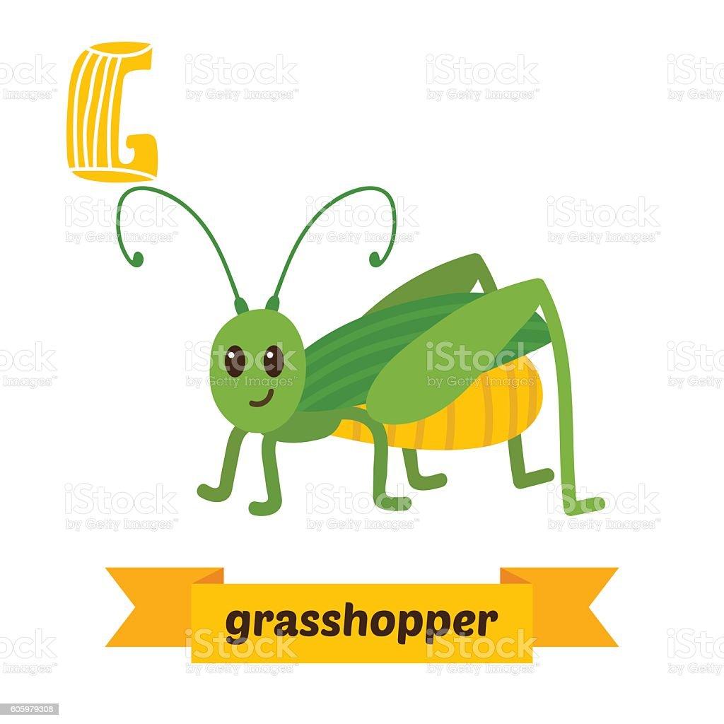Grasshopper. G letter. Cute children animal alphabet in vector. vector art illustration