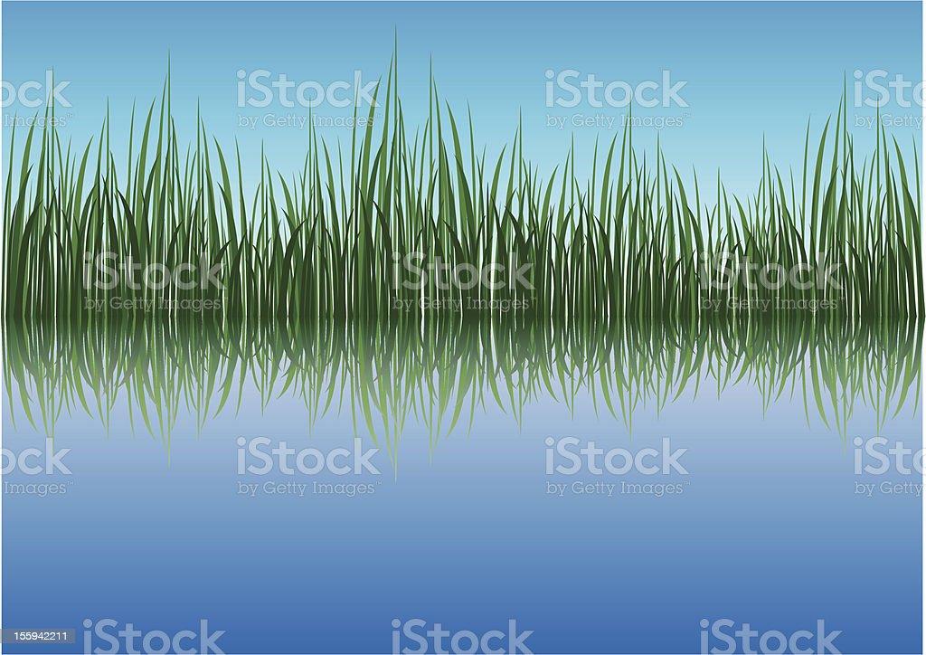 Grassy river vector art illustration