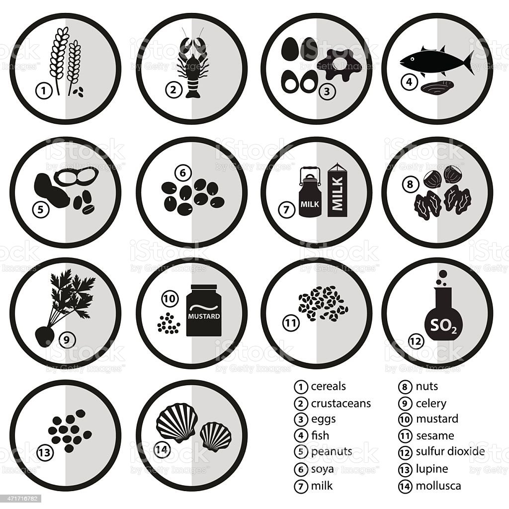 grayscale set of typical food alergens for restaurants eps10 vector art illustration