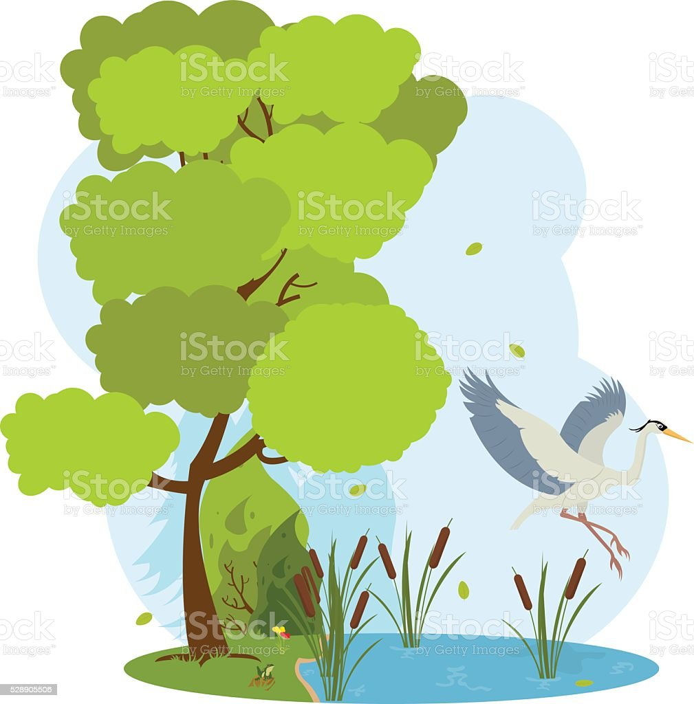 great heron flies over the pond. vector art illustration