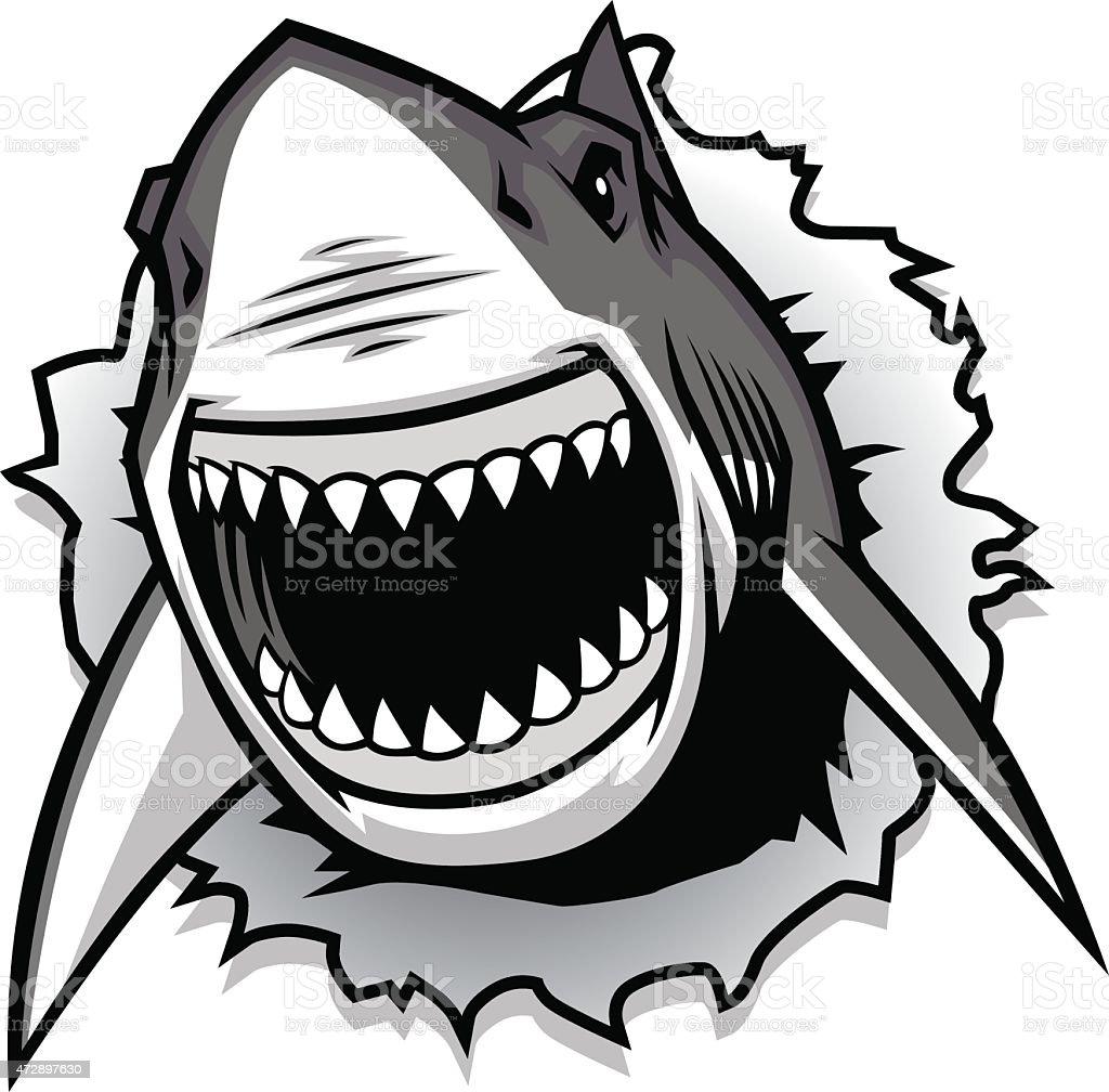 Grand Requin Blanc Sautant Hors De L'-eau Avec Sa Bouche Ouverte ...