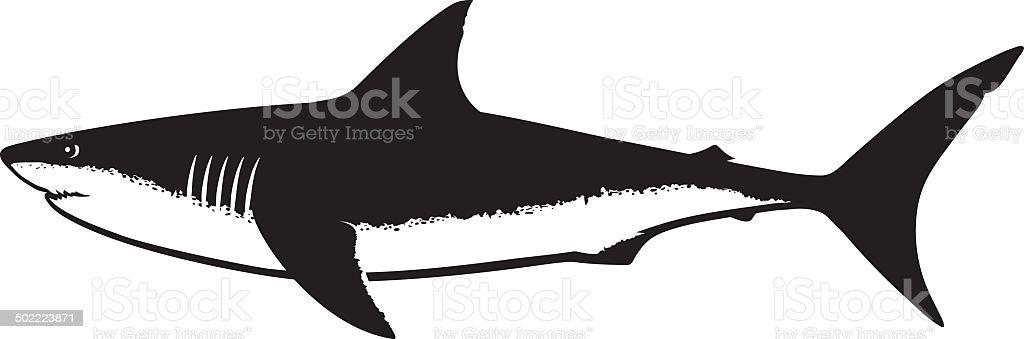 Great White Shark Silhouette Isolated on White vector art illustration