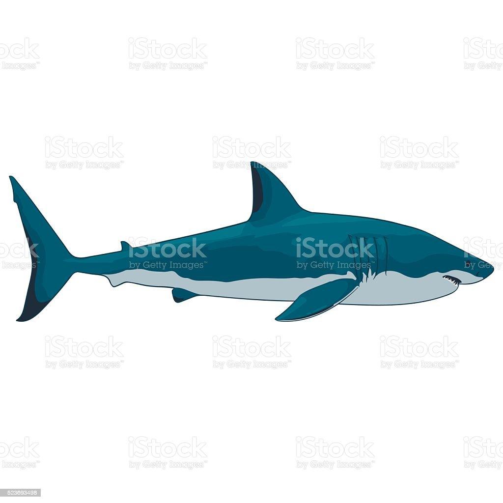 Grand requin blanc stock vecteur libres de droits libre de droits