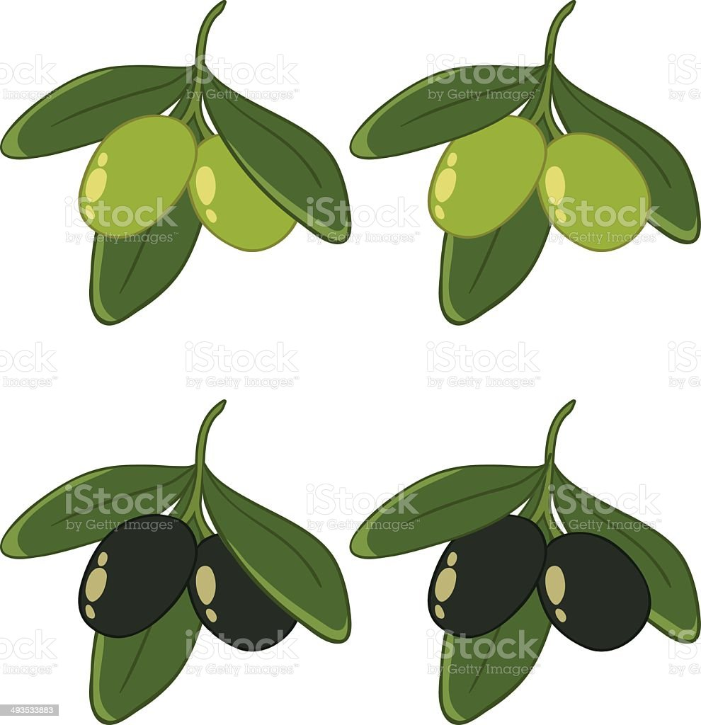 green and black olives on white background royalty-free stock vector art