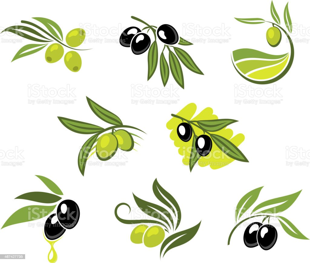 Green and black olives set vector art illustration