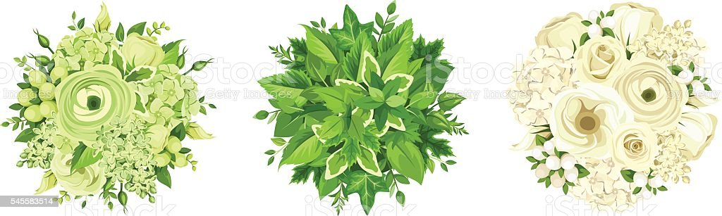 Green and white flowers and leaves bouquets. Vector illustration. vector art illustration